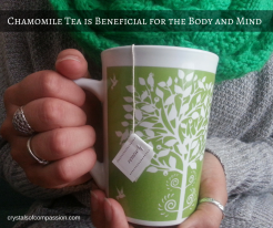 Chamomile Tea for Anxiety